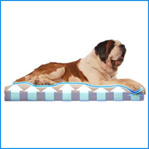 DogPedic Orthopedic Dog Bed
