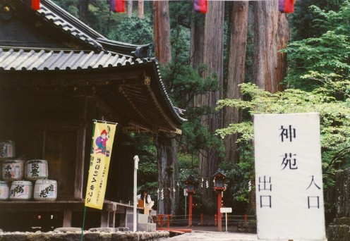 The Futaarasan Shrine with giant Cryptomeria trees in background.