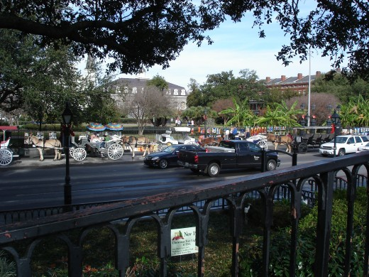 A buggy ride through the French Quarter