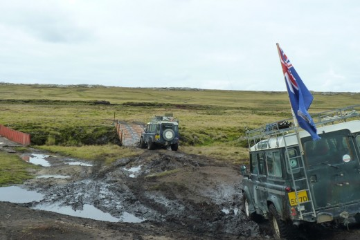 You leave the bus and board 4 x 4's  to travel across the bogs to the penguin colonies... and it is rough!