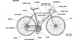 Source: http://www.learnersdictionary.com/art/ld/bicycle.gif
