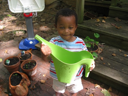 This simple watering can also makes it easy to pour bird seed