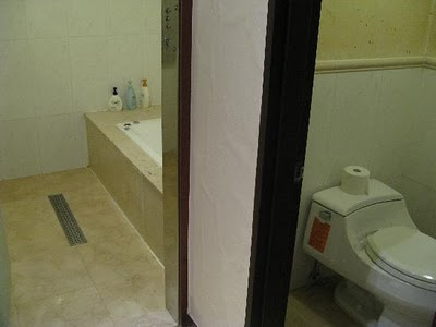 World Class Public Toilets With Attached Bathrooms at Indira Gandhi International Airport Delhi, India