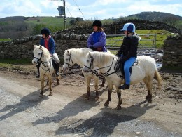 A Family Ponyriding (Image Source: Christian Guther, Wikimedia Commons)