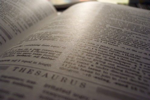 A thesaurus and continuing reading experience will help your language in any form, including on resumes.