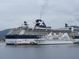 The Celebrity Infinity ship holds 2,000 passengers (our ship). The Le Diamant ship holds 200 passengers. Both  ships are docked in Ushuaia after their trip to Antarctica.
