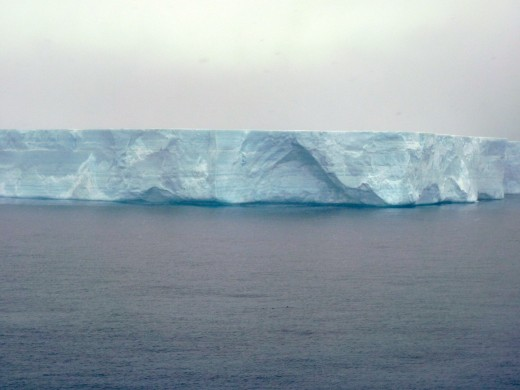 This blue flat iceberg or ice sheet was about one mile long (too big for the picture)