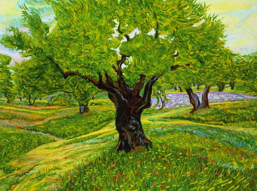 Olive Tree, from thierryhennequinfineart.com