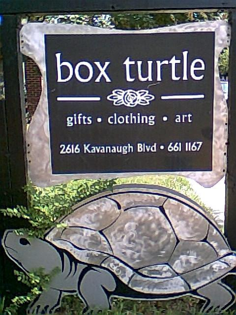 The Box Turtle in the Heights in Little Rock