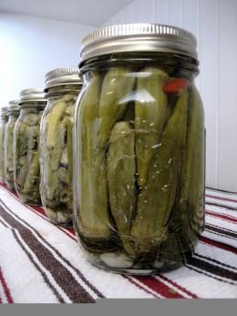 Photo Source: http://www.flickr.com/photos/marik0