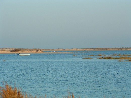 Ria Formosa near Olho