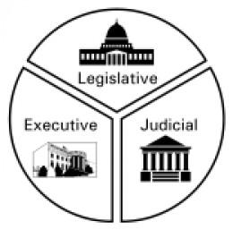 executive branch essay questions
