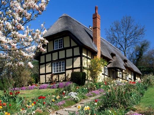 Spring Garden, England. From Pixdaus.com (post by farhad)