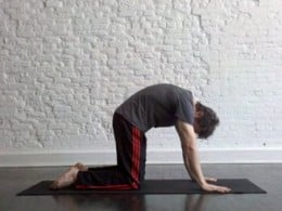 The Cat and cow pose help to release tension in the neck and shoulders