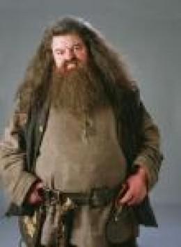Hagrid Masks