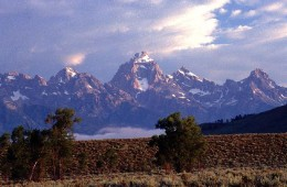 Photo by Wayne Busch - Morning view of the Tetons, WY