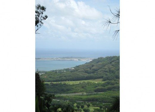 A beautiful view on Pali Lookout. Warning: Hold your Hat!