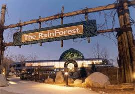 The Rain Forest at the Cleveland Metro Parks Zoo