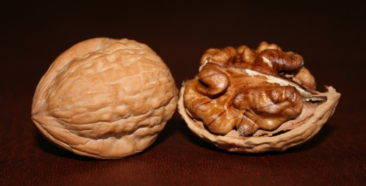 English Walnuts image courtesy Wikipedia.
