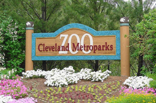 Spend a Day at the Cleveland Metroparks Zoo