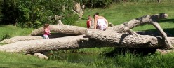 Fun For Free--McCourtie Park in Somerset, Michigan