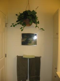 Hanging plant in bathroom- put them everywhere/anywhere!