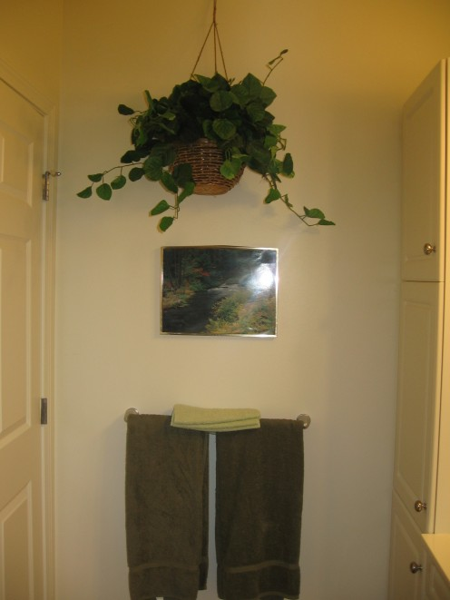 Hanging plant in bathroom- put them everywhere/anywhere!