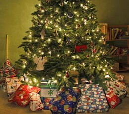 Use effective Christmas internet Marketing to make sure products from YOUR website end up under the tree this Christmas.
