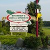 It's Christmas 361 Days a Year at Bronner's in Frankenmuth - Best Christmas Store In America
