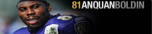 Baltimore Ravens wide receiver #81 Anquan Boldin