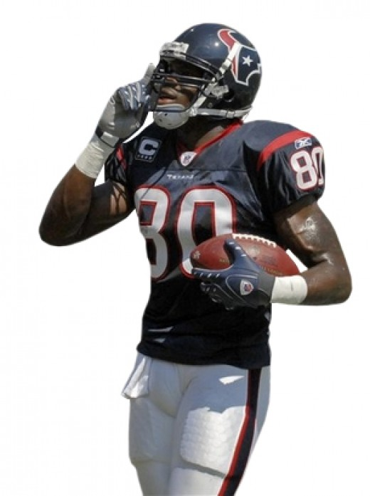 Houston Texan Wide Receiver Andre Johnson