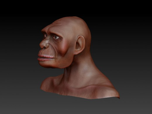 Homo_Habilis Zbrush. Perhaps the first ancestor of man to become modern man eventually.
