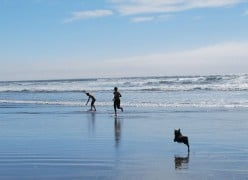 Visit the Oregon Coast: a Pet-Friendly Vacation