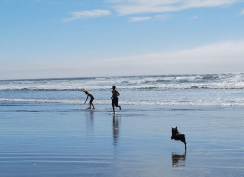 Our little dog, Earl, plays along the shoreline in Manzanita on the Oregon Coast