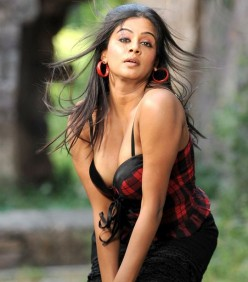 Sexy Priyamani Exclusive Interview & Hot Photo Gallery