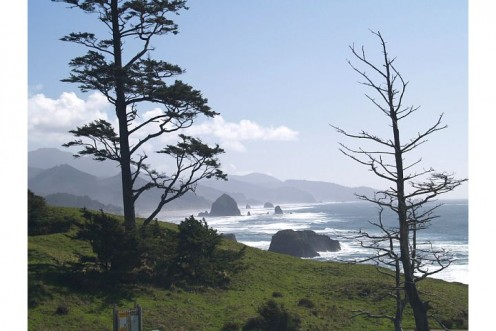 The Oregon Coast near Canon Beach