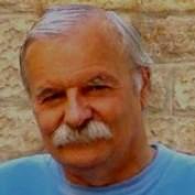 Nino Plevnik profile image