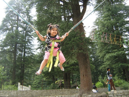 Adventure activities for kids in Manali - Bungee Jumping in Van Vihar Manali