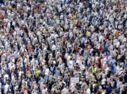 Baseball game crowd.