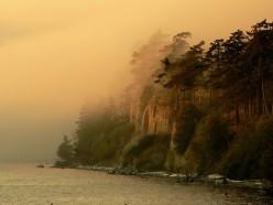 Cliff fog off San Juan Island