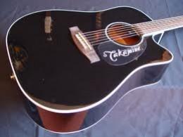 Takamine G Series EG341SC