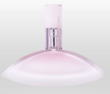 Euphoria Perfume for Women