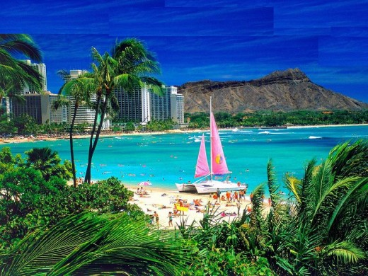 Paradise, otherwise known as Waikiki Beach in Oahu, Hawaii