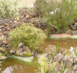 Las Gangarras pools