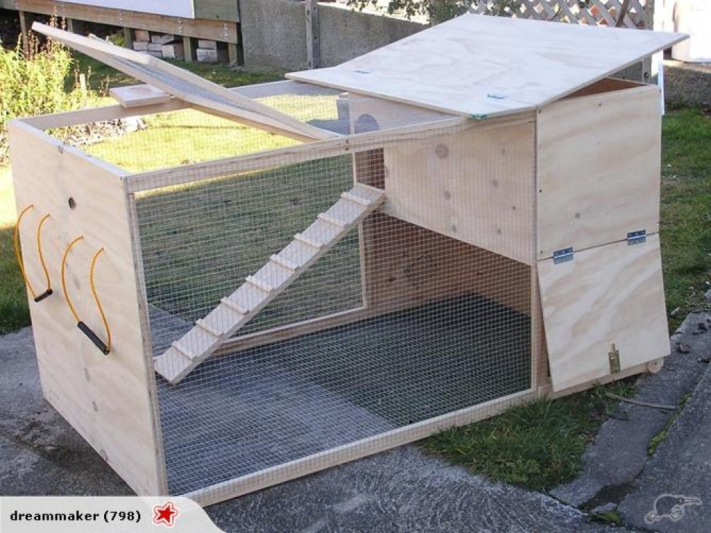 How Big Should My Bunny's Cage Be?