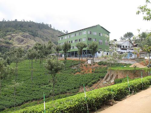 Tea Factory @ Coonoor