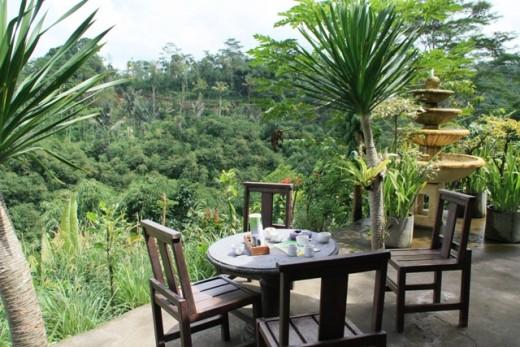 Coffe Estate in Kintamani