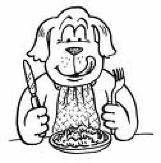 Reading dog food labels will ensure your dog is happy at dinnertime