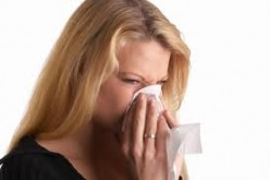 Things you should Understand about Severe Allergy