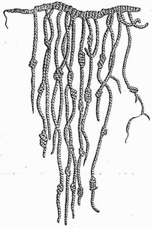 Knotted strings are a coded writing and numerical system used by the Inca.